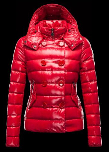 Moncler PLANE Jacket Women's Shiny Hooded Parka R