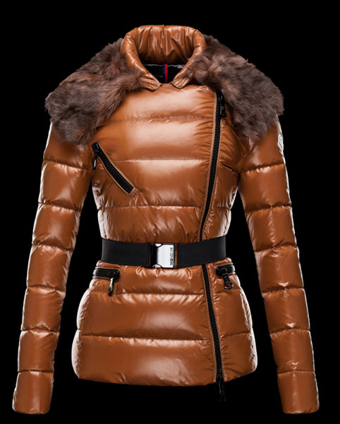 Moncler Women's Parka Brown Fur Collar