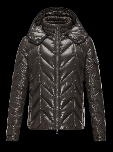 Moncler Men's Down Jacket BERRIAT Quilted Hoodie Brown