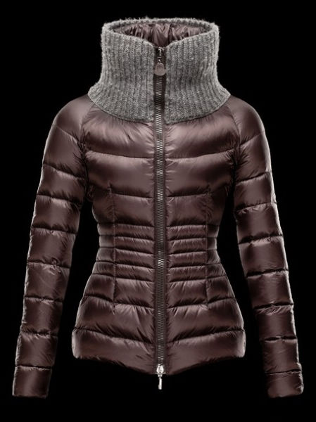 Moncler Down Jacket Women Brown