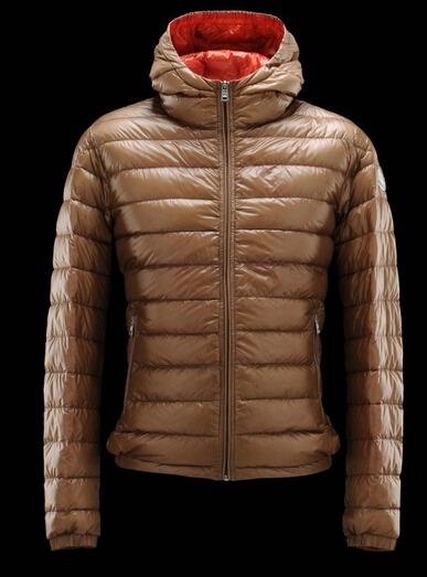 Moncler Down Jacket Women Down Jacket france Brown