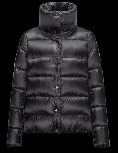 Moncler BOURDON down jacket woman gray